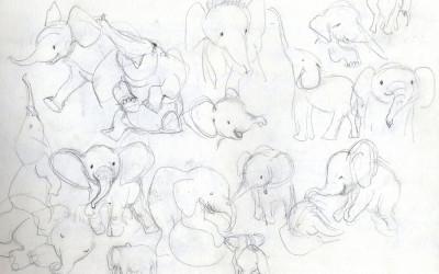 Elephant Studies