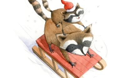 Raccoons Sledge